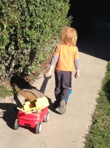 Blog Boy with wagon