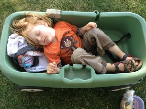 Sleeping Ender in Wagon