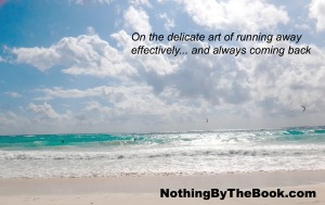Art of Running Away NBTB