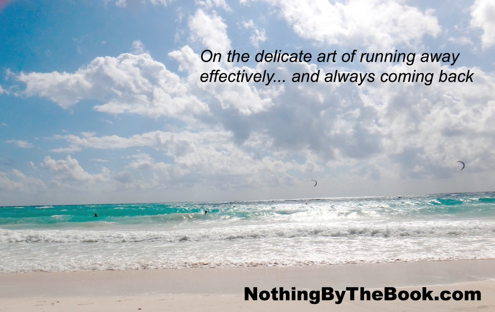 Art of Running Away NBTB