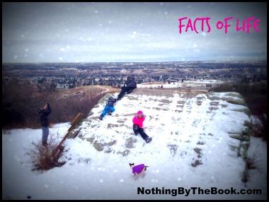 NBTB-Facts of Life
