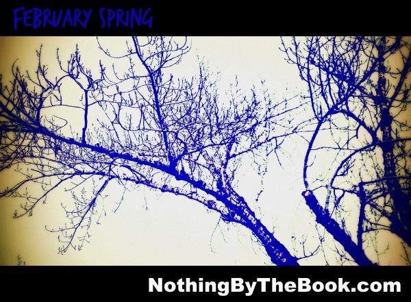nbtb-Feb Spring