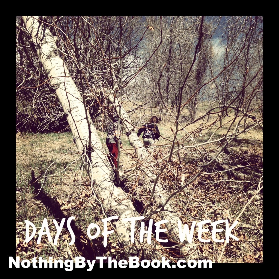 nbtb-days of the week