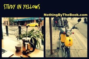 nbtb-study in yellows