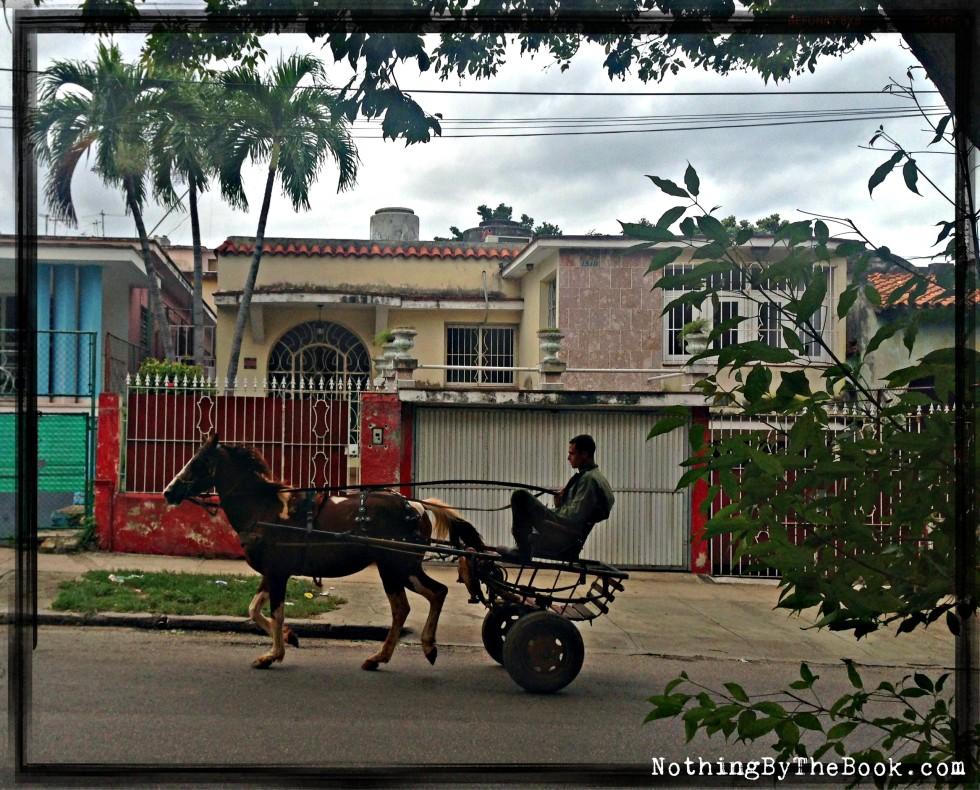 10-Horseandbuggyinhavana